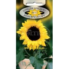 Соняшник низькорослий Кімнатний 1г ТМ Roltico Польща
