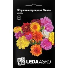 Георгіна карликова Пікколо 0,2г LEDAAGRO