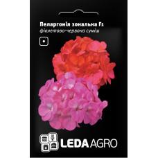Пеларгонія Зональна F1 фіолетово-червона 5шт LEDAAGRO