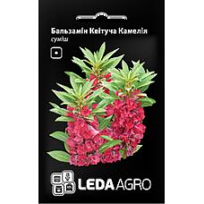 Бальзамін квітучий  Камелія 0,5г LEDAAGRO