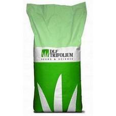 Насіння газонної трави DLF Trifolium Світлолюбива 20кг
