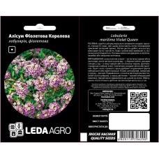 Аліссум Фіолетова королева 0,2г LEDAAGRO