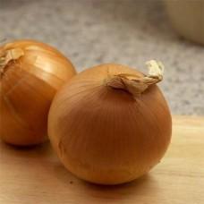 Озима цибуля саджанка Бургас Голландія Top Onion 500г