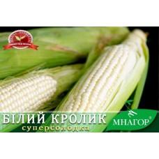Кукурудза цукрова Білий кролик F1 200шт ТМ МНАГОР