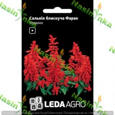 Сальвія блискуча Фарао червона 0,05г LEDAAGRO