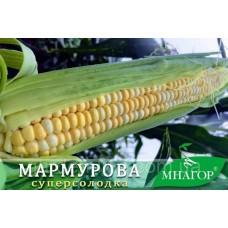 Кукурудза цукрова Мармурова F1 50шт ТМ МНАГОР