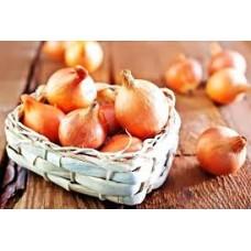 Озима цибуля саджанка Сеншуй Голландія Top Onion 500г