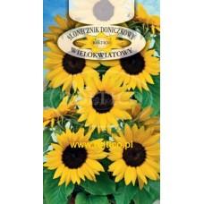 Соняшник низькорослий Кімнатний багатоквітковий 1г ROLTICO