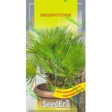 Вашингтнонія пальма кімнатна 5шт ТМ SeedEra